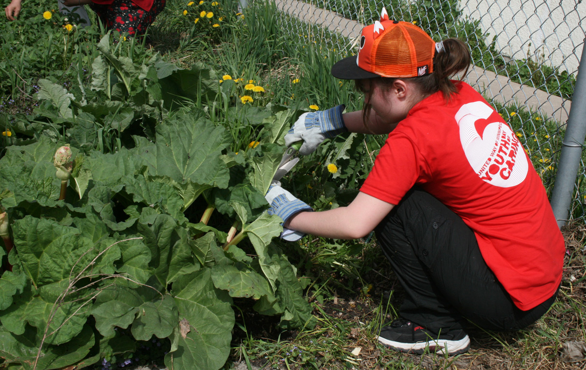 Youth Day of Caring volunteers making the community a better place for everyone.