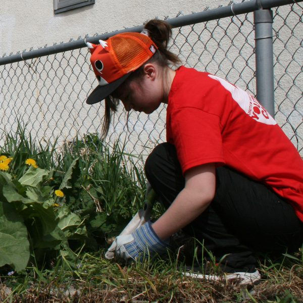 Volunteer at the Youth Day of Caring.