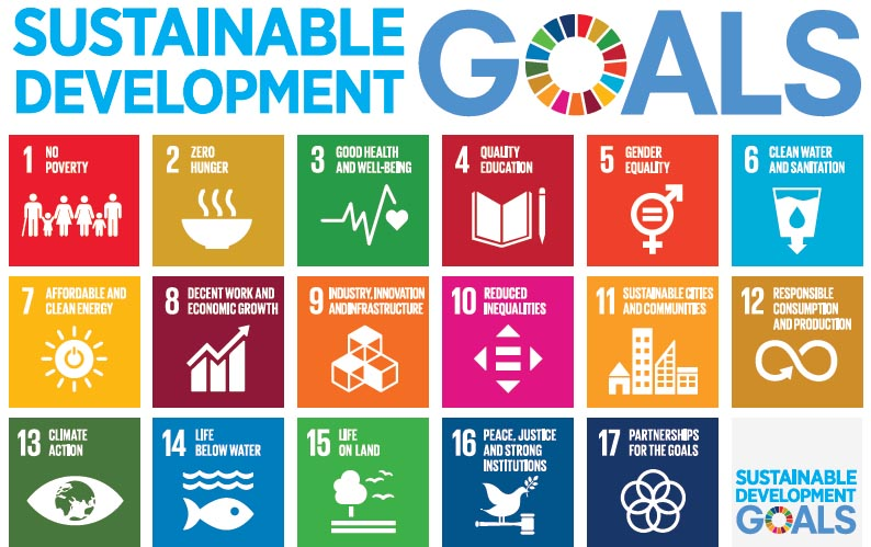 The UN Sustainable Development Goals.
